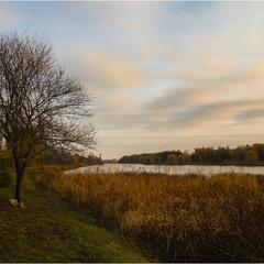 Золотой берег осени...