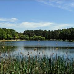 Светлый день на озере...