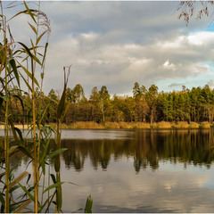 Хороший день у озера...