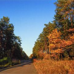 Осенний путь...