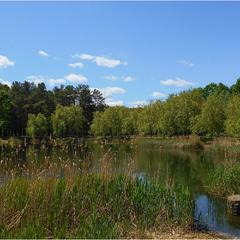 Май на озере...