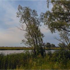 На реке Прорва...