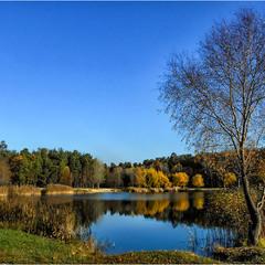 Яркий пейзаж ноября.