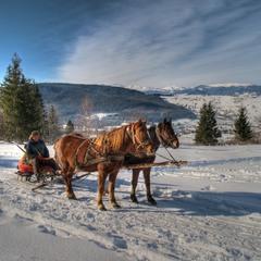 """""""Зима!.. Крестьянин, торжествуя, на дровнях обновляет путь..."""""""