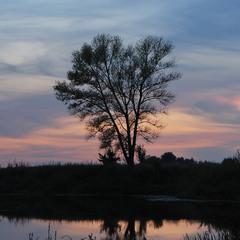 Вечір на річці