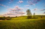 Над травами, під хмарами