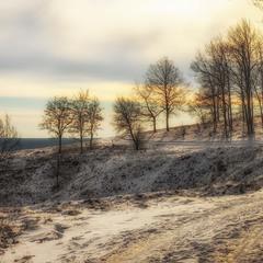 Зима лес снег