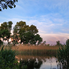 Травневий ранок біля річки