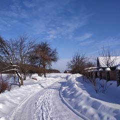 Зимно в селі
