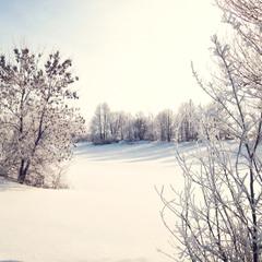 Справжня холодна зима!