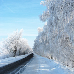 Насичена зима!