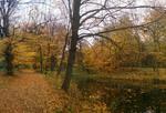 Вдоль осеннего пруда