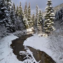 Зимняя река в Карпатах
