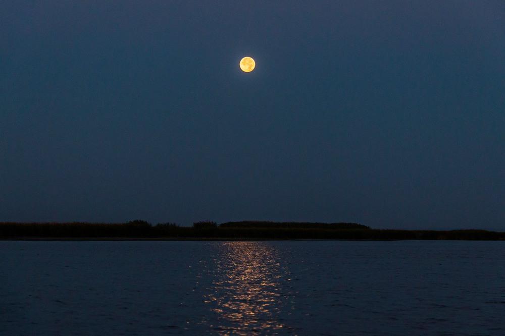 имеют дополнительную фото восход луны над днепром простыми