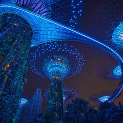 Сингапур. Прогулки между небом и землей