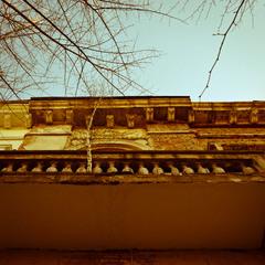Балкон для берёзы...