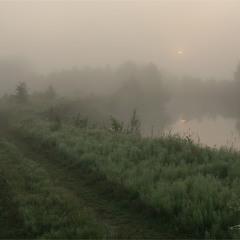 Туманні береги...