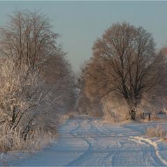 Морозним Різдвяним ранком...