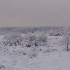 Зимові простори...