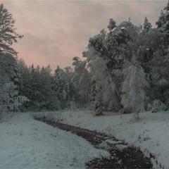 Зимовий ранок...