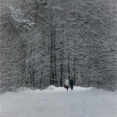 Дорога в зиму...