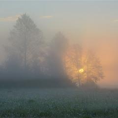 Магія світанку