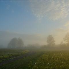 Теплим ранком...