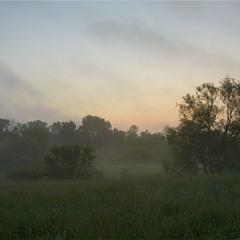 Ранкова