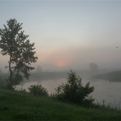 Червневий ранок