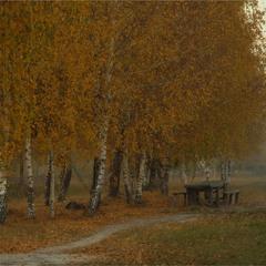 Перед листопадом...