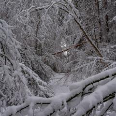 Навалило снігу не пройти