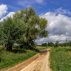 Шлях у літо