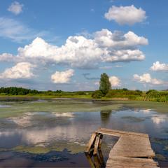 Звичайний літній день )