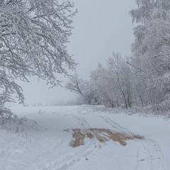 Перший сніг 2020 ІІ