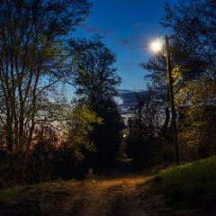Сутінки в селі