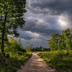 Дорога до села