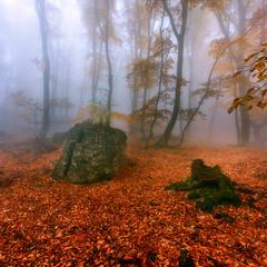 Осенняя ...туманная...