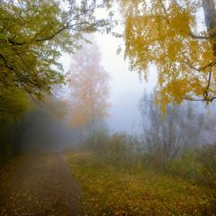 Убранство осени туманной