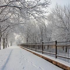 Зимняя диагональ