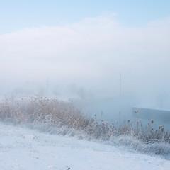 Проснуться с туманом