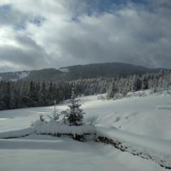 Снегопад прошёл