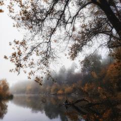 Мелодия тумана