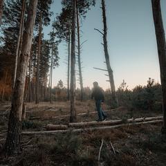 """Город - калечит, лес лечит... "" ."