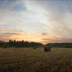 Вечер в поле