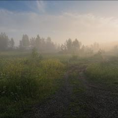 Уходя в туман