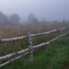 туманное утро ..