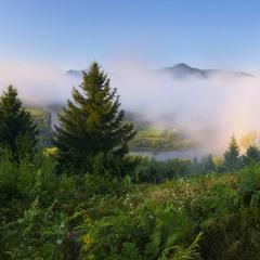 Тумани Прикарпаття