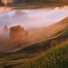 Утро в долине туманов ..