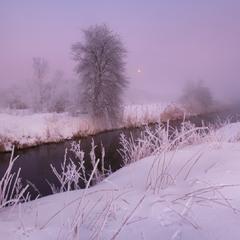 Рассвет в морозном тумане ..