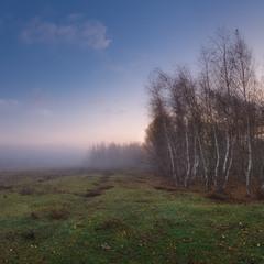 Осенняя меланхолия ..